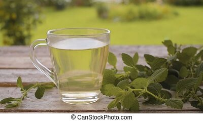 Melissa tea in glass cup - Close-up a transparent cup of ...