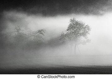 melo, in, nebbia, in, il, taunus, zona, in, hesse