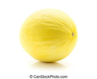 Melon Honeydew isolated on white