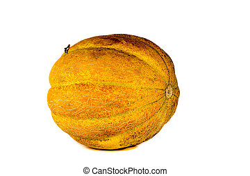 Melon isolated on white background. Copy space for text