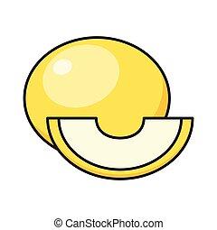 melon line flat icon