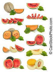 melone, frutta, collezione