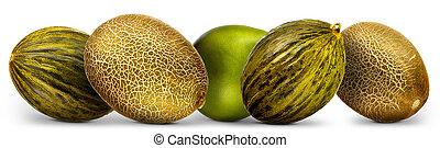 melonen, gruppe, freigestellt, pomelo, hintergrund, weißes