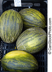 melons in a fruit