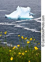 Melting iceberg off the coast of Newfoundland, Canada
