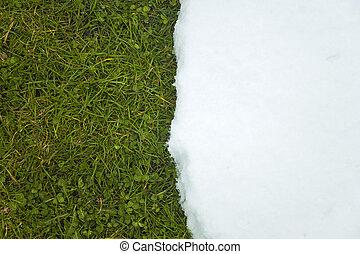 Melting snow on green grass close up