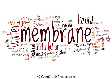 Membrane word cloud