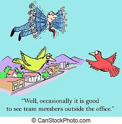 membri, squadra