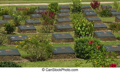 Medium low-angle still shot of rows of black memorial graves with colorful flowers, Taukkayan War Cemetery, Rangoon, Myanmar