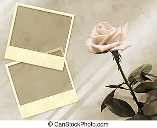 Memories - Grunge background with rose and photoframes