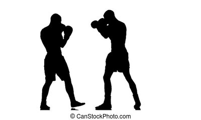 Men boxers train punches and kicks. Slow motion. Silhouette