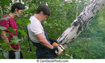 Men cuts away fresh birch in the forest, using electric...