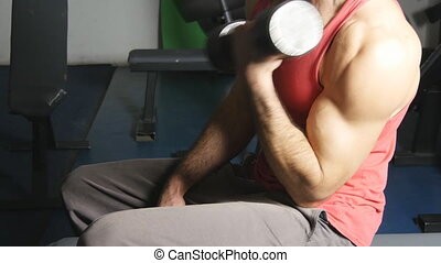 Men doing exercising with dumbbells in gym