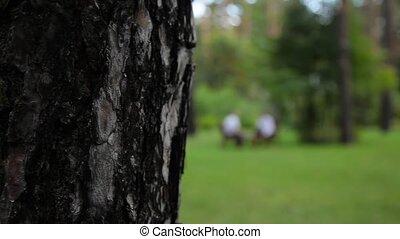 Men in suits talking in park