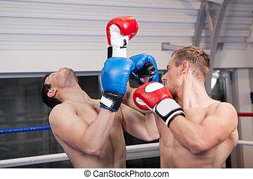 Men kickboxing. Two sportsmen kickboxing on the ring