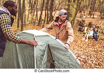 Men pitching tent in autumn forest - Young men pitching tent...