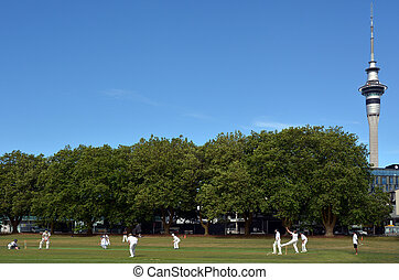 Men play Cricket in Victoria park Auckland, New Zealand -...