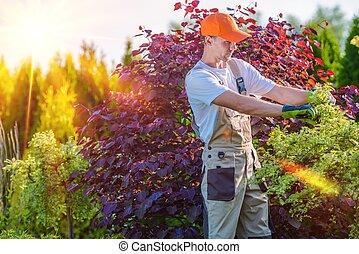 Men Taking Care of Garden