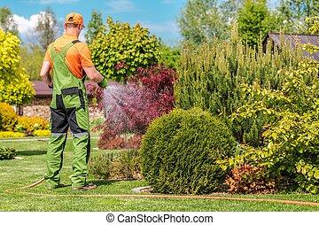 Men Watering Garden Plants