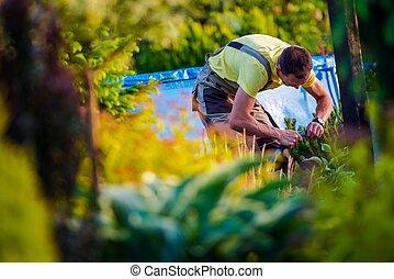 Men Working in His Garden