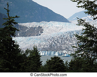 Mendenhall glacier framed by trees with mountains behind...