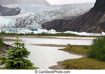 Mendenhall Glacier National Park in Juneau Alaska