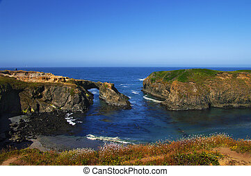 Mendocino State Park cove - A view of the pacific ocean from...