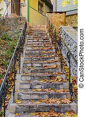 mener, baissé, pierre, couvert, maison, étapes, feuilles