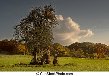Menhirs in the fall