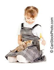menina, alimentação, britânico, gatinho, isolado, branco