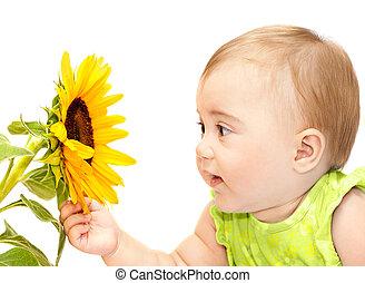 menina bebê, explorar, flor