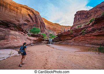 menina, hiker, andar, a, cachoeira, coiote, gulch, escalante