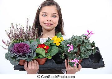 menina, pequeno, flowers., segurando, grupo
