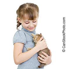 menina, segurando, britânico, gatinho, isolado, branco