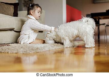 menininha, com, um, cão