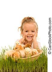menininha, com, um, cesta, cheio, de, pequeno, galinhas