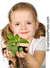 menininha, segurando, planta jovem