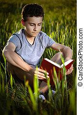 menino, adolescente, livro, pôr do sol, leitura