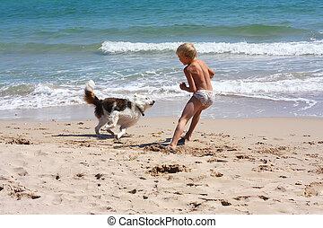 menino, cão, mar, tocando