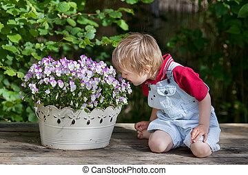 menino, cheirando, a, flores