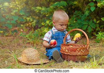 menino, com, um, cesta maçãs
