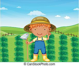 menino, fazendas, trabalhando