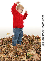 menino, folhas, criança