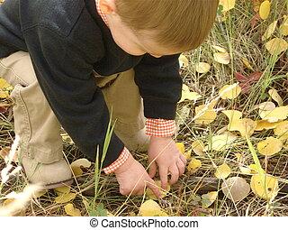 menino, folhas, tocando
