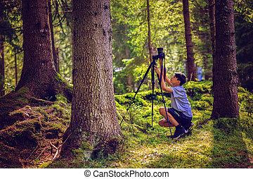 menino jovem, leva, quadros, em, natureza