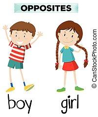 menino, menina, palavras, oposta