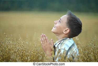 Menino, orando, campo