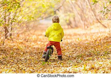 menino, pequeno, bicicleta, learner, montando
