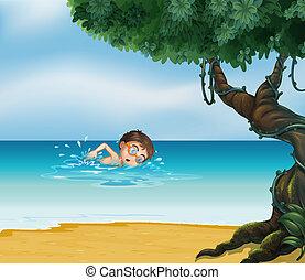 menino, praia, árvore velha, natação