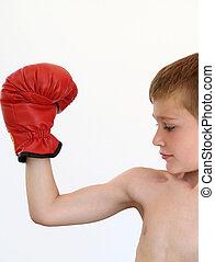 menino, pugilista, fazer, músculo